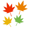 simple_maple_4p-300x300.png